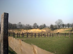 Les prairies des Écuries de l'Abbaye